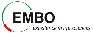 EMBO Long-Term Fellowship