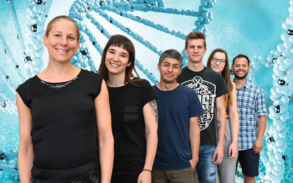 Members of the Research Lab of Nadine Schwierz
